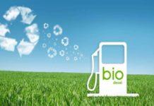 Biodiesel come fonte energetica alternativa