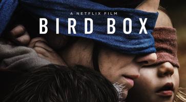 Bird box e l'analisi del rapporto duale madre-figlio